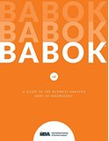 A Guide to the BABOK